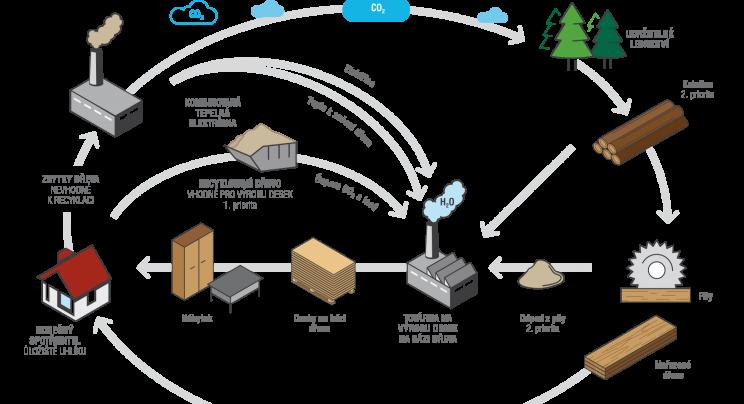 Koloběh dřeva v oběhové ekonomice